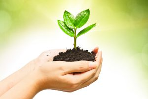 ethical investing devon